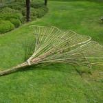 Feuille de Ginkgo biloba réalisée en bambou par Patrice LEBRETON